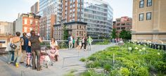 The High Line Blog | Friends of the High Line