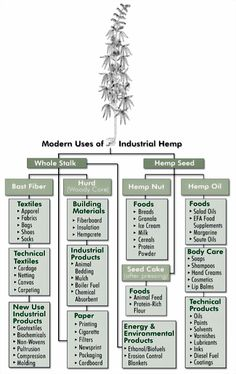 Modern Uses of Industrial Hemp  Hemp is not a Drug
