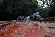 Conheça a enseada de Jasper Creek, na Venezuela