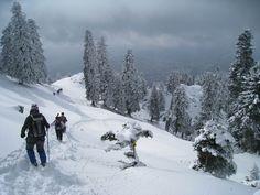 ορειβατικό σκι στην Ελάτη, Κόζιακας #outdoorsgr Snow, Activities, Adventure, Mountains, Nature, Travel, Outdoor, Outdoors, Naturaleza