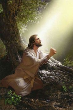 jesus praying fervently in the garden of gethsemane Images Bible, Bible Pictures, Pictures Of Jesus Christ, Religious Pictures, Jesus Our Savior, Jesus Is Lord, Jesus Painting, Bible Art, Today's Scripture