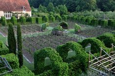 """Priory d' Orsan:  """"This is the amazing cloister with the """"Architecture"""" all in clipped hornbeam. The four quadrants are planted with grapes."""""""