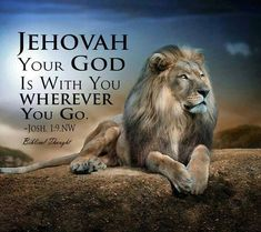 Lion is a peace, we will be soon. Spiritual Thoughts, Spiritual Life, What Is Hope, Follow The Prophet, Lion Quotes, Lion Drawing, The Great I Am, Tribe Of Judah, Bible Encouragement