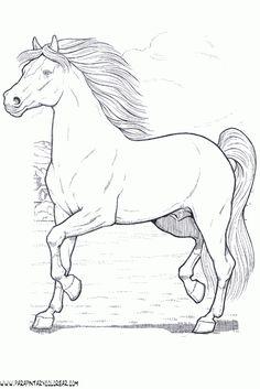 dibujos de caballos - Buscar con Google