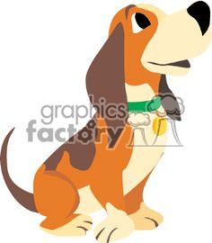 cute dog wearing a green collar