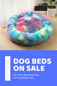 Looking for the Donut Dog Bed Cute Dog Beds, Pet Beds, Miniature Dog Breeds, Therapy Dog Training, Dog Breeds Little, Unique Dog Breeds, Loyal Dogs, Dog Shop, Dog Wallpaper
