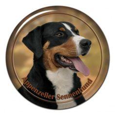 #Appenzeller Sennenhund