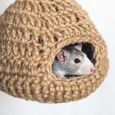 Custom pet bed rat hamster Bed for a hamster a bed by NatalieKnot Baby Hamster, Hamster Care, Hamsters, Hamster Bedding, Small Animal Cage, Pet Cage, Little Critter, Dog Sweaters, Pet Beds