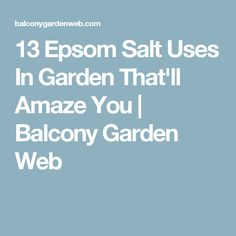 13 Epsom Salt Uses In Garden That'll Amaze You   Balcony Garden Web