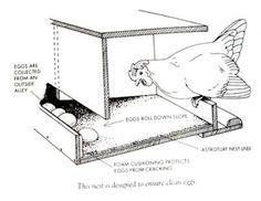 Roll away nesting box for egg eaters.