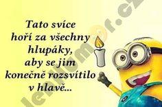Snad to pomůže :) Funny Memes, Jokes, Lol, Humor, Husky Jokes, Humour, Memes, Funny Photos, Funny Humor