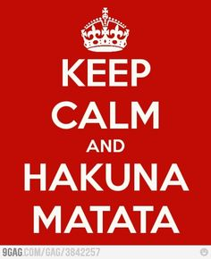 It means no worries for the rest of our days... it's a problem free... philosophy!.. Hakuna Matata!