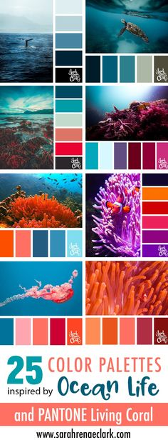 Color palettes 47217496081781042 - Explore the beautiful colors of the ocean with these 25 color palettes inspired by ocean life and PANTONE's 2019 Color of the Year, Living Coral. Source by miladydewint Ocean Color Palette, Ocean Colors, Colour Pallette, Tropical Colors, Pantone Colour Palettes, Color Schemes Colour Palettes, Decorating Color Schemes, Color Schemes For Bedrooms, Home Color Schemes