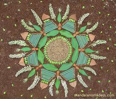 Mandala Art Medium: ~~seed balls, tiny evergreen leaf, buckeye leaf, marsh grass stalk, earth rock, underside of magnolia leaf and budding buckeye blossom on a brown earth canvas~~