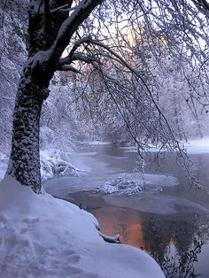 winter sunset by GalynaP, via Flickr
