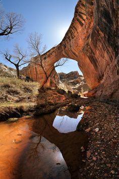Sipapu Bridge, Natural Bridges National Monument, Utah; photo by Ryan Houston
