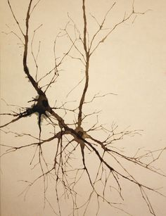 neuron tattoo leg - Google Search