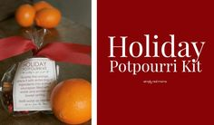 Holiday Potpourri Kit Gifts   Simply Real Moms