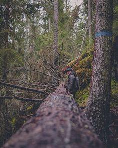 Man of the woods. #theniqlas  @alexceders