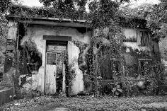 Wong Chuk Yeung, Abandoned Village, Sai Kung, Hong Kong