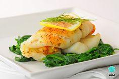 Aprende a preparar filetes de pescado rellenos con mariscos con esta rica y fácil receta. El primer paso para preparara estos filetes de pescado rellenos es hacer el...