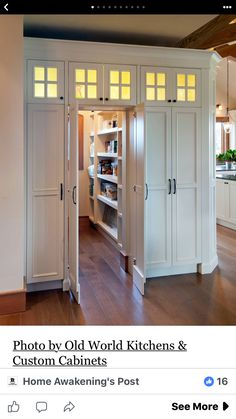 THIS IS HOW THE WALK-THROUGH PANTRY DOOR WILL FUNCTION.  WE WILL SEE IF WE CAN HAVE THE DOORS SWING IN THOUGH.