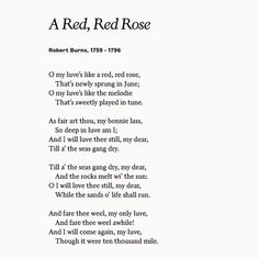 """Share """"A Red, Red Rose"""" by Robert Burns to expand on your love for your wife or girlfriend. Robert Burns, Scottish Poems, Scottish Gaelic, Red Quotes, Life Quotes, Poetry Books, Poetry Quotes, Rose Poems, Classic Poems"""