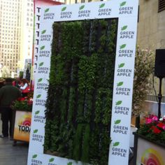 Green Living Wall Gallery | Green Living Technologies Vertical Garden Plants, Living Roofs, Plant Wall, Growing Plants, Outdoor Structures, Gallery, Green, Design, Roof Rack