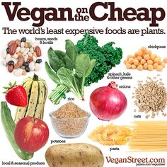 Eating vegan doesn't have to be expensive. Find some cheap recipes here.