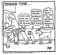 Dinner Time...  https://www.facebook.com/OffTheLeashDailyDogCartoons