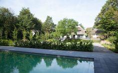 Luxe villatuin met zwembad. Terrastegels van schellevis betontegels en zwembadranden. Zicht vanaf 't zwembad terug naar de woning.