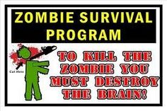 Zombie Survival Program