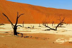 A VISITER Long de plus de 1 300 kilomètres, le Namib est large de seulement 150 kilomètres. Cette bande désertique longe la côte ouest de la Namibie caressant ainsi les eaux de l'Océan Atlantique. Le pays ne compte que deux rivières permanentes : la rivière Orange qui forme la frontière avec l'Afrique du Sud, et le Kunene aux limites de l'Angola, dans le nord du pays.