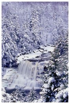 Blackwater Falls State Park, West Virginia and Secret Places in America That Most Tourists Don't Know About Beautiful World, Beautiful Places, Amazing Places, Blackwater Falls, Winter Scenery, Snow Scenes, State Parks, Wv State, Belle Photo