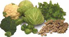 ¿Por qué la vitamina K está de moda? La popularidad de la vitamina K ha aumentado hasta convertirse en un ingrediente habitual de comidas, bebidas, complementos nutricionales y suplementos vitamínicos.