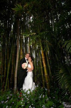 bride and groom under bamboo trees Sundy House, Delray Beach, FL Sister Wedding, Our Wedding, Wedding Stuff, White Rolls Royce, Miami Wedding Venues, Bamboo Tree, Wedding Inspiration, Wedding Ideas, Delray Beach