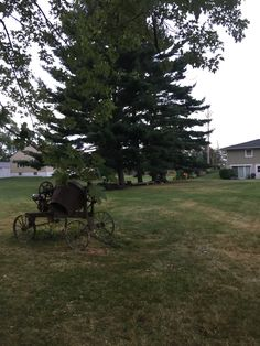 Horse Drawn, Outdoor Furniture, Outdoor Decor, Bench, Horses, Park, Plants, Home Decor, Horse