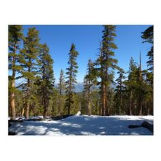 #photo - #Hiking Down from Mitchell Peak at Sequoia Postcard