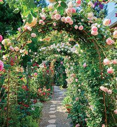 Beautiful Home Gardens, Beautiful Flowers Garden, Beautiful Roses, Rose Garden Design, Small Rose Garden Ideas, French Garden Ideas, French Cottage Garden, Rose Cottage, Dream Garden