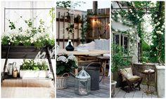 Odling på fönsterbrädan - THE NORDIC KITCHEN