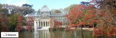 El otoño ya pasó, pero nos dejó su impronta en los cipreses del estanque, junto al Palacio de Cristal