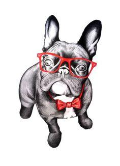 French Bulldog in Red Glasses, illustration.