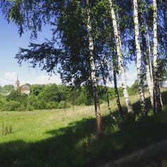 д.Дольское #экотуризм #агротуризм #деревня #экоферма #природа #лес #поле #дача#farm