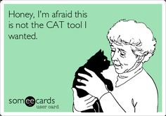Honey, I'm Afraid This Is Not The CAT Tool I Wanted. | Confession Ecard