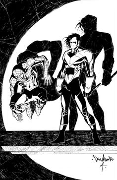 Spider-Man and Nightwing by Sean Murphy *