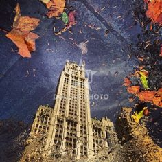 http://www.dollarphotoclub.com/stock-photo/Manhattan Reflection/59087384 Dollar Photo Club millions of stock images for $1 each