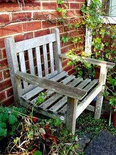 I already have one of the cedar benches in my garden that looks like this.  I want to paint the new one.