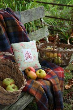For Amanda apples from the garden 9~9~2015