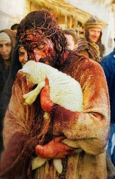 There is a story that this little lamb was wandering behind the scenes of the movie The Passion of the Christ. So the actor playing Jesus (Jim Caviezel) picked it up and they got this poignant picture ...
