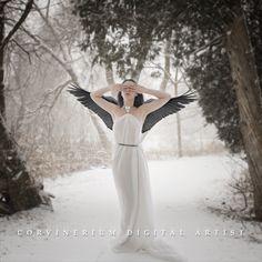 Swan by Corvinerium.deviantart.com on @DeviantArt